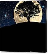 The Tree The Moon The Stars Canvas Print