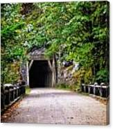 The Tunnel On The Scenic Route Canvas Print