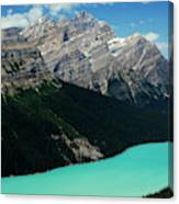 The Turquoise Colored Peyto Lake Canvas Print