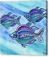 The Turquoise Rainbow Fish Canvas Print