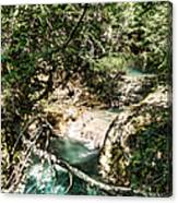 The Turquoise Waters Of The Forest River No2 Canvas Print