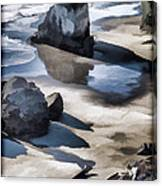 The Unexplored Beach Painted Canvas Print