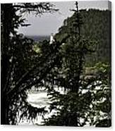 The View Of The Heceta Lighthouse Canvas Print