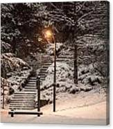 The Warmth In The Snow Canvas Print