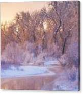 The Warmth Of Winter Canvas Print