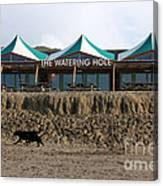 The Watering Hole Perranporth Canvas Print