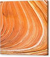 The Wave II Canvas Print