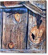 The Weathered Abstract From A Barn Door Canvas Print