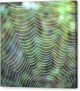 The Web Canvas Print