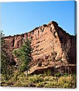 The Wedge Canyon Dechelly Canvas Print