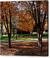 The Well In The Distance-davidson College Canvas Print