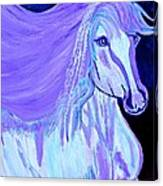 The White And Purple Horse 1 Canvas Print