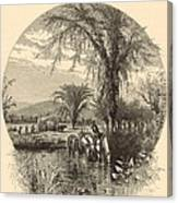 The White Mountains From The Conway Meadows 1872 Engraving Canvas Print