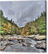 The Wild River Oil Painting Canvas Print