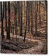 The Wilderness Canvas Print