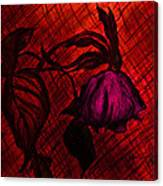 The Wilted Pink Rose Canvas Print