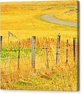 The Winding Road The Crooked Fence And The Bluebird Canvas Print