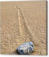 The Winner Death Valley Moving Rock Canvas Print
