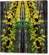 The Wishbone Tree Canvas Print