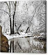 The Wonders Of Winter  Canvas Print