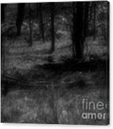 The Woods Are Lovely Dark And Deep Canvas Print