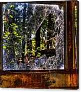 The Woods Through A School Bus Window Canvas Print