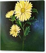 The Yellow Daisy Canvas Print