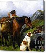 The Young Gamekeeper Canvas Print