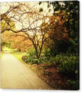 Then Autumn Arrives 04 Canvas Print