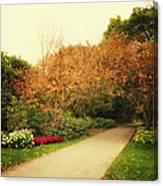 Then Autumn Arrives 05 Canvas Print