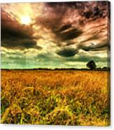 There Is A Sun After The Storm Canvas Print