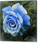 There Were Roses Triptych 2 Canvas Print