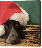 These Are All For Santa Canvas Print