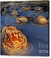 The Egg Factory  Bisti/de-na-zin Wilderness At Night Canvas Print