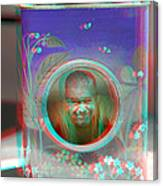 Thinking Inside The Box - Red/cyan Filtered 3d Glasses Required Canvas Print
