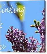 Thinking Of You - Greeting Card - Lilacs Canvas Print