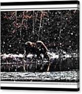 Thirsty Moose Impressionistic Painting With Borders Canvas Print