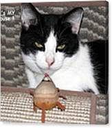 This Is My Mouse Canvas Print