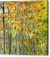 This Is What Autumn Brings Canvas Print