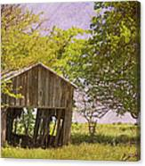 This Old Barn Canvas Print