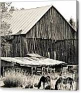 This Old Farm Canvas Print