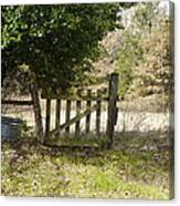 This Old Gate Canvas Print