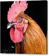 this Rooster Means Business Canvas Print