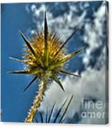 Thistle And Sky Canvas Print