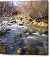 Thomas Creek Canvas Print