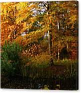 Thoreau's Splendour Canvas Print