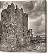 Threave Castle In Grey Canvas Print