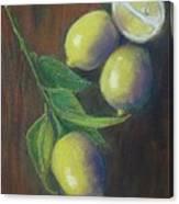 Three And A Half Lemons Canvas Print