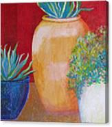 Three Bright Pots Canvas Print