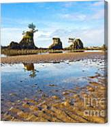 Three Brothers Rock Formation Near The Oregon Coast Canvas Print